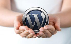 Wordpress Websites E-Courses Coaching Consultation Maintenance